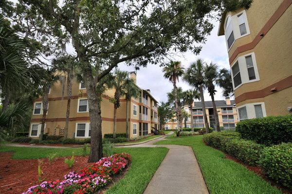 Arbor Place Apartments Jacksonville Fl Reviews