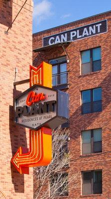 Can Plant Apartments San Antonio Reviews
