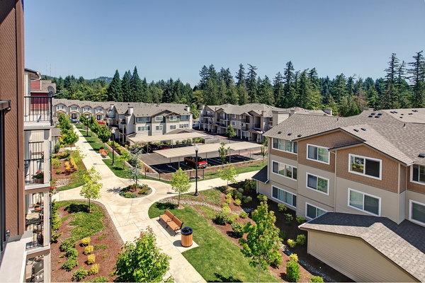 timber ridge apartment homes ratings reviews map rents