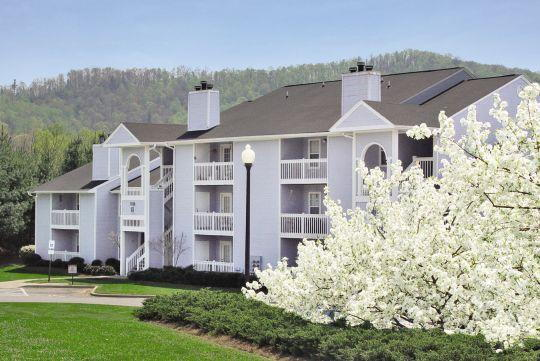 candler senior singles Residential care homes near candler, nc and is a single family home setting providing personalized care services for senior other senior housing in candler, nc.