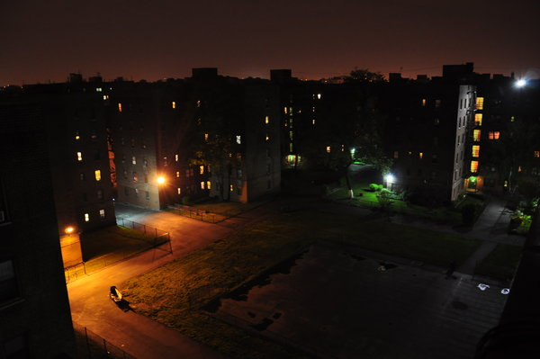 ... Flatbush Gardens Reviews By Flatbush Gardens Ratings Reviews Map Rents  And Other ...